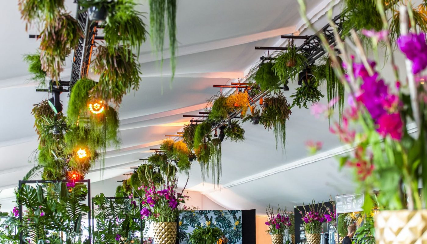 Bas de Boer Eventstyling Parookaville Festival 2019 PlatinumClub Hängende pflanzen Blumendekoration www.basdeboer eventstyling.de 030 1400x800 - Parookaville Festival 2019
