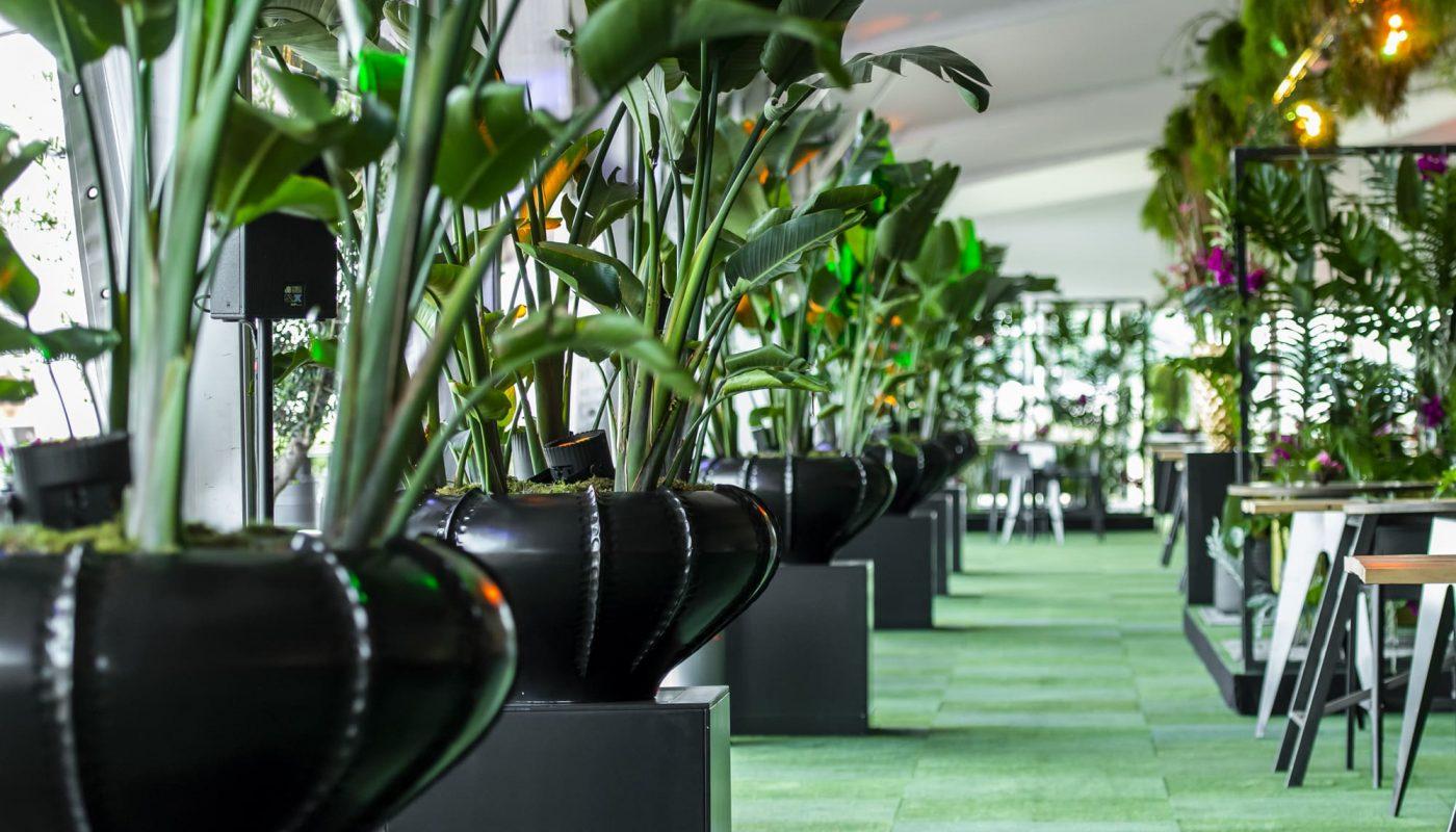 Bas de Boer Eventstyling Raumdekoration Mietpflanzen Locationdecoration www.basdeboer eventstyling.de 046 1400x800 - Parookaville Festival 2019